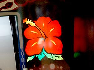 展示会速報「パチスロ キュイン ハナチャン」&「じゃぶじゃぶビートワールドツアー」内覧会開催(ニューギン)