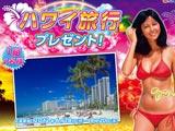 大海2アグネスにちなみハワイ旅行プレゼント(三洋物産)